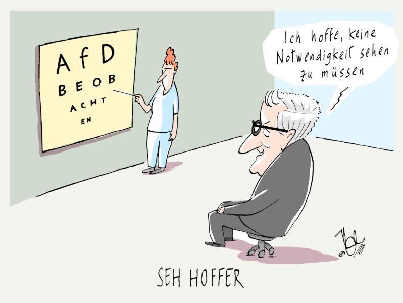 AfD beobachten seehofer