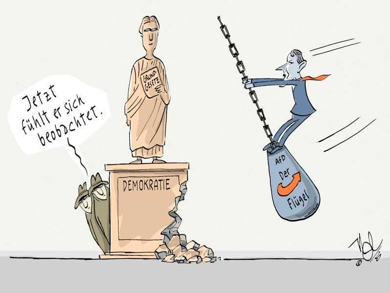 afd verfassungsschutz beobachten rechtsextremistisch flügel demokratie abrissbirne