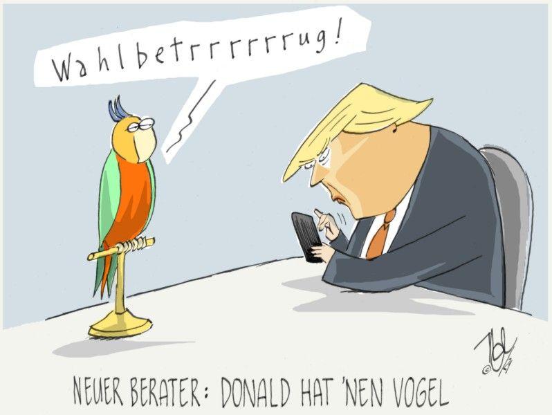 trump wahlbetrug neuer berater vogel